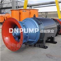天津漂浮式潛水軸流泵供應商