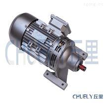 WB100-WD-59-Y0.55KW微型摆线针轮减速机
