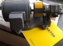 EBARA 20GPF(EBARA齿轮泵现货)