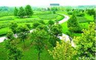 北京新一轮百万亩造林绿化启动 十万亩拆迁腾退地将变风景林